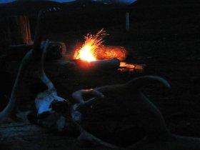 Unser Lagerfeuer aus Treibholz brennt besser als erwartet