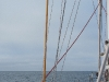 Freier Blick auf den Isfjord
