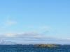 Auf den Felsen im Fjord tummeln sich sonst viele Vögel
